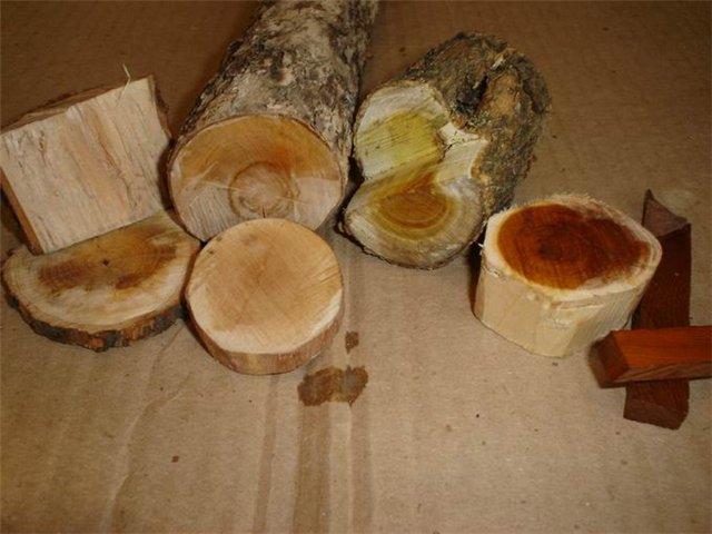 Как сушить дерево в домашних условиях чтобы